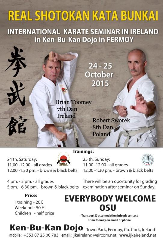 tiff seminar in ireland poster kopia (Large)